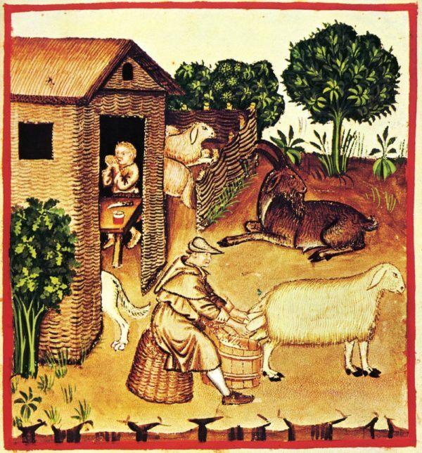 imperio-carolingio-la-historia-carlomagno-campesinos