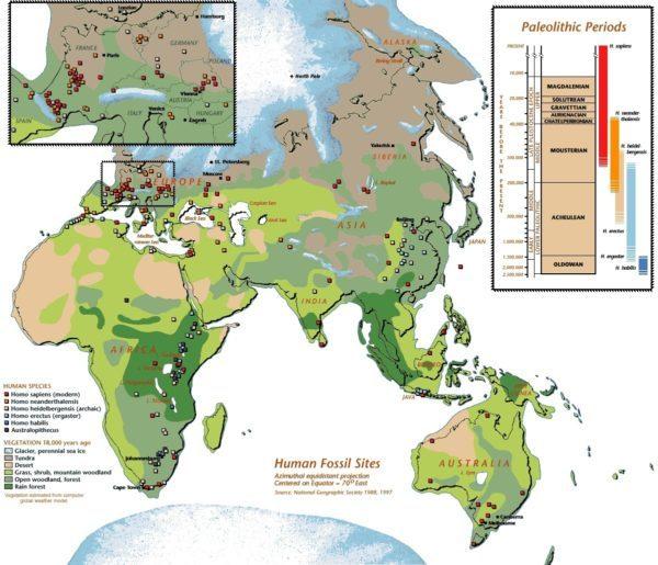 homo-sapiens-migracion