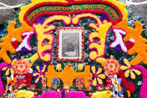 Frida kahlo y la maternidad los abortos y el arte homenaje