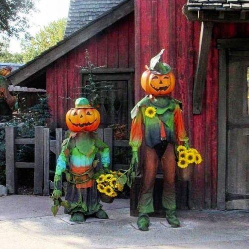 Disfrazados de calabaza halloween