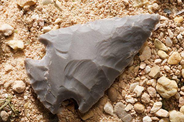 Homo sapiens piedra