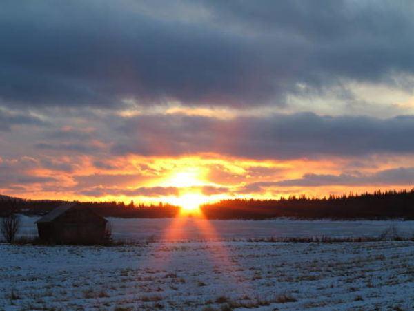 Origen pagano de navidad saturnales vikingos sol
