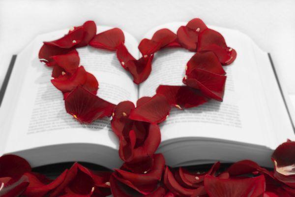 Pétalo de rosa formando corazón en libro