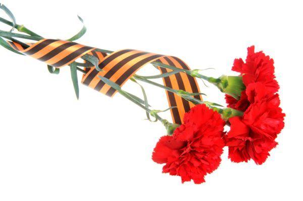 Rosas con cinta