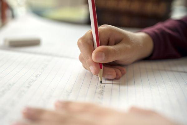 Trabajos escolares segun curso