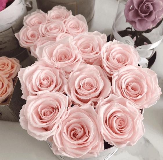 La historia del Día de la Madre: su origen y cuándo se celebra en el mundo flores