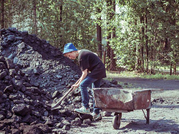Dia mundial trabajo infantil cuando es por que se celebra cual es su origen