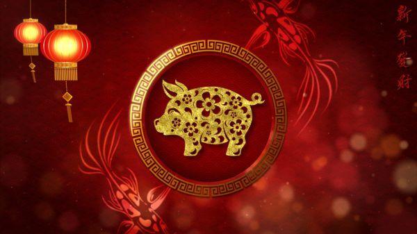 Cerdo horóscopo chino