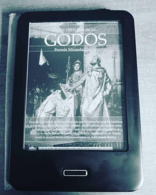 Quiénes eran los Reyes Godos