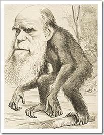 darwin, caricatura de mono