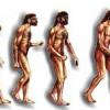 Prehistoria: cazadores y recolectores en el Paleolitico, ¿quienes, donde y cuando?