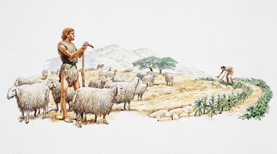 Del establecimiento de la ganadería y de una economía de base ganadera surge la trashumancia, que pone en contacto a los pueblos