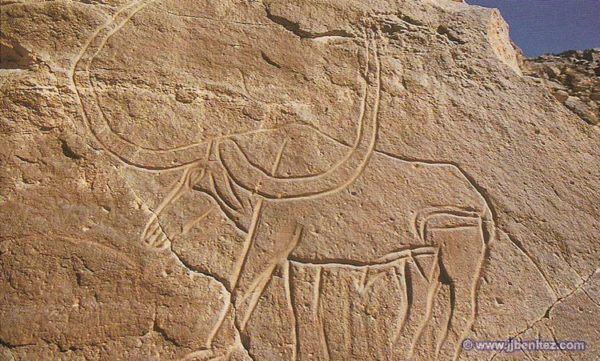 neolitico-los-senores-del-metal-vida-animales
