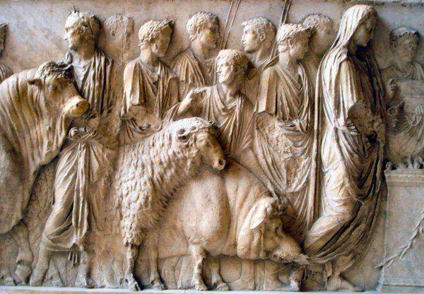 porcofobia-un-odio-historico-el-cerdo-un-animal-venerado-desde-la-antiguedad-grecia