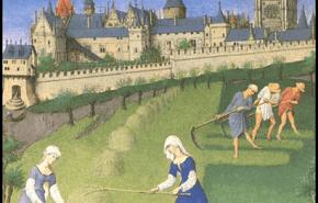El arado, la herramienta que posibilitó la expansión del siglo XI