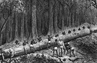 imageRepresentación de la construcción de una gran canoa durante la expedición de Stanley