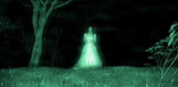 Teresa fidalgo - Immagini fantasma a colori ...
