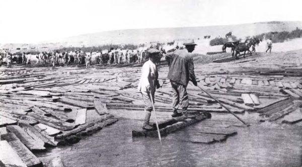 el-imperialismo-en-el-siglo-xix-el-reparto-del-mundo-deforestacion