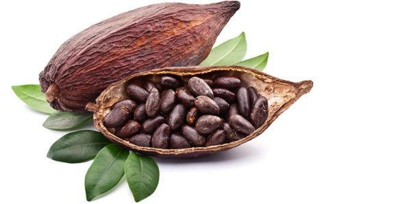 alimentacion-tras-el-descubrimientos-de-america-Cacao
