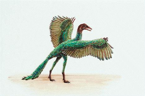 epoca-de-dinosaurios-Archaeopteryx
