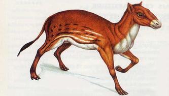 epoca-de-dinosaurios-Hyracotherium
