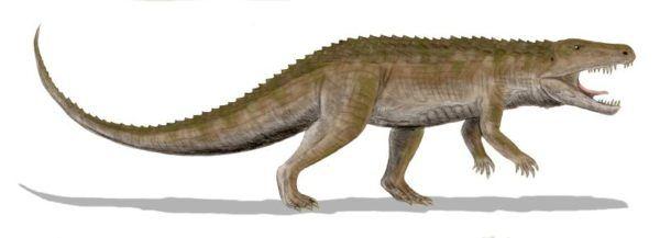 epoca-de-dinosaurios-erpetosuchus
