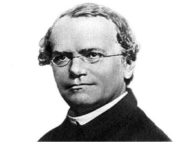 Gregor Mendel Neodarwinismo