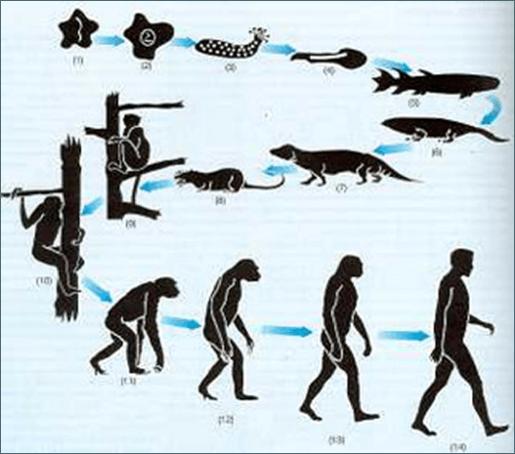 Charles Darwin Biografía Y Teorías Sobrehistoriacom