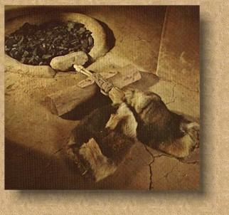 La Prehistoria - Edad de Piedra y Edad de los Metales