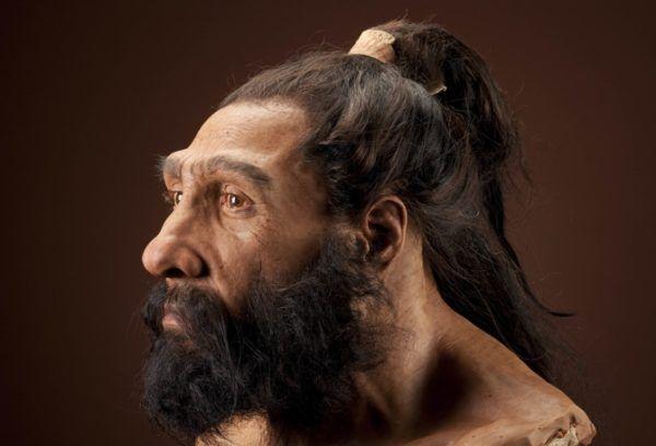 Homo Neanderhalensis