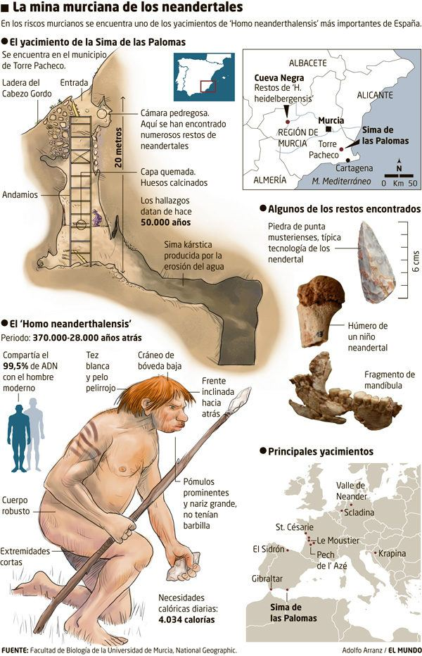 homo-neardenthalensis-mina-murcia