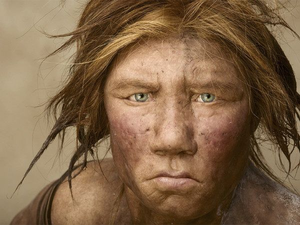 homo-neardenthalensis-neardental