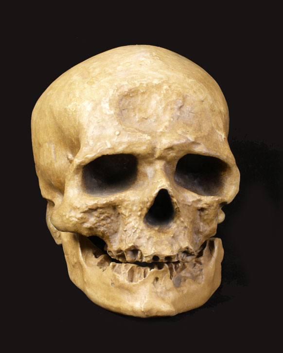 homo-sapiens-caracteristicas-cromagnon1