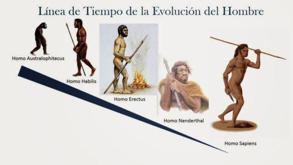 Resultado de imagen de aparición homo sapiens