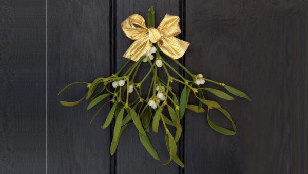 muerdago-navidad-origen-puerta