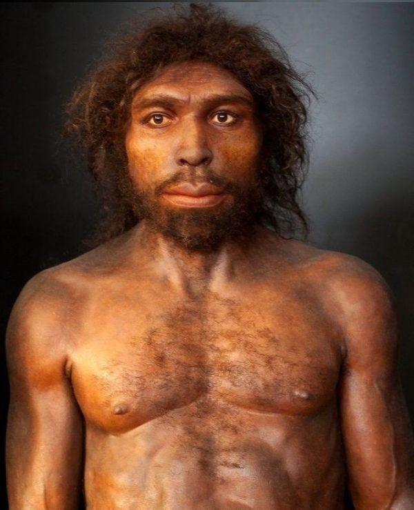 sobrehistoria-edades-de-la-prehistoria-temario-secundaria-altamira-homo-sapiens-sapiens