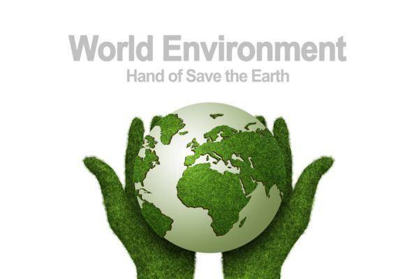 cuando-es-el-dia-del-medio-ambiente-verde-istock