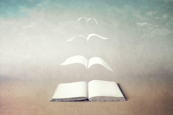 caracteristicas-de-la-ilustracion-libro-hojas-vuelan-aves-istock