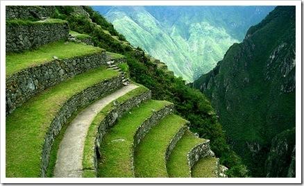 Icas_terrazas de cultivo