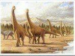 Dinosaurios: ¿cuanto sabemos sobre ellos?