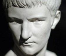 Incitatus, el caballo pródigo II