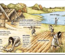 Prehistoria: Sociedades Neoliticas ¿como se dio la invencion de la agricultura?